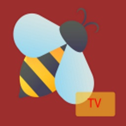 How to Install BeeTV on Android and Firestick